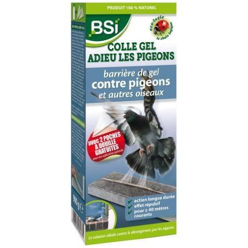 anti pigeon fait maison