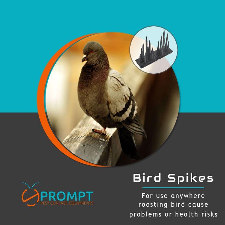 anti pigeon glue