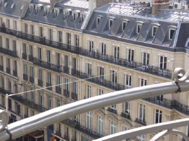 anti pigeon immeuble