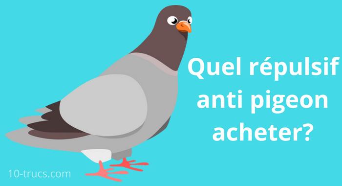 anti pigeon le plus efficace