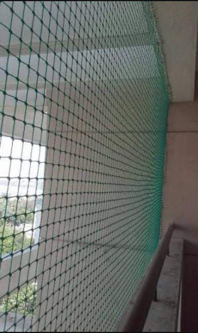 anti pigeon netting