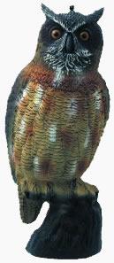 anti pigeon owl