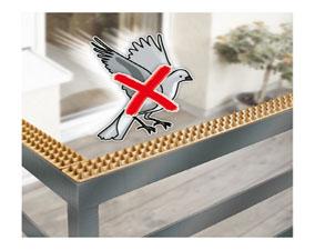 anti pigeon solution