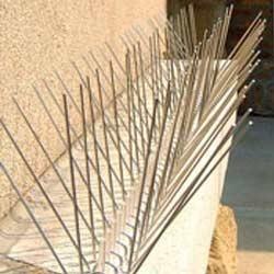 anti pigeon spikes india