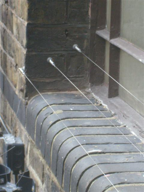anti pigeon wire