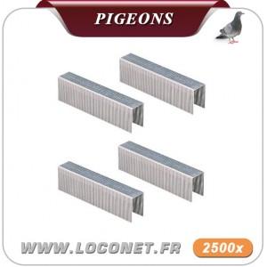 fiche technique filet anti pigeon