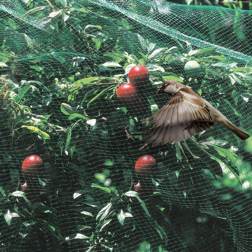 filet anti pigeon jardiland