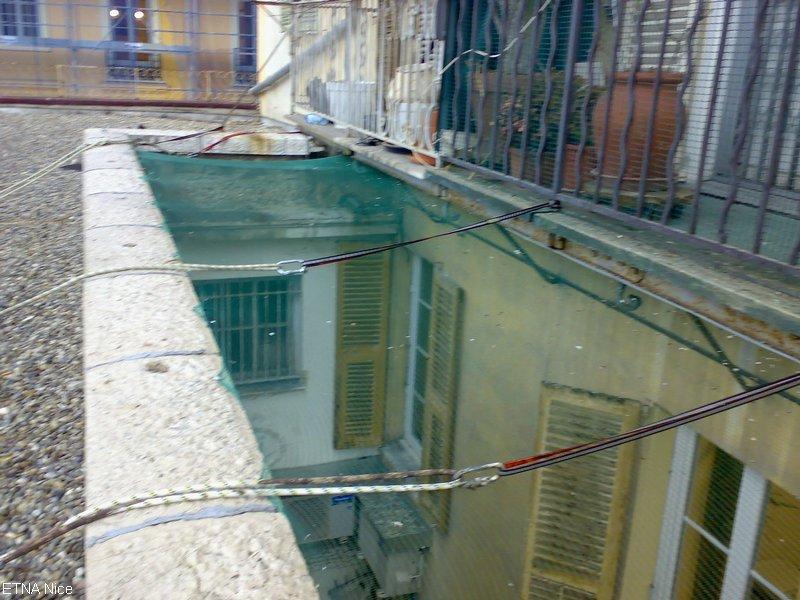 pic anti pigeon transparent