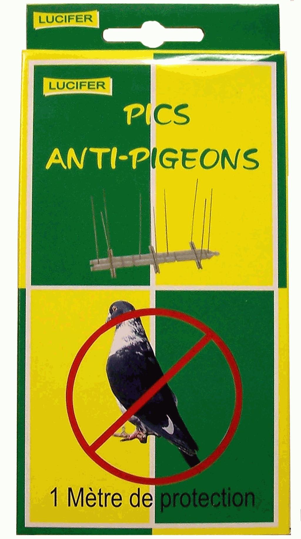pics anti pigeons 1m