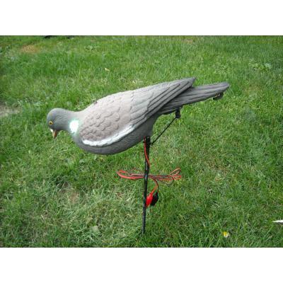 piege a pigeon electrique