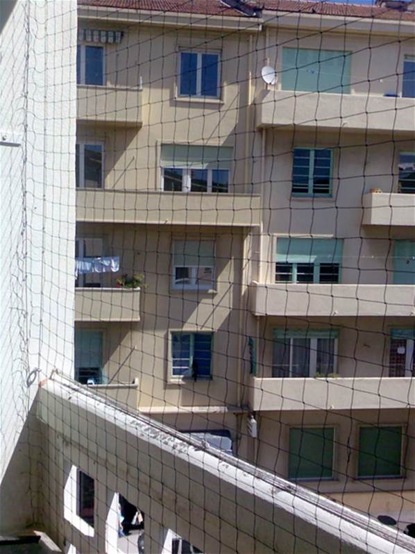 piege a pigeon pour balcon