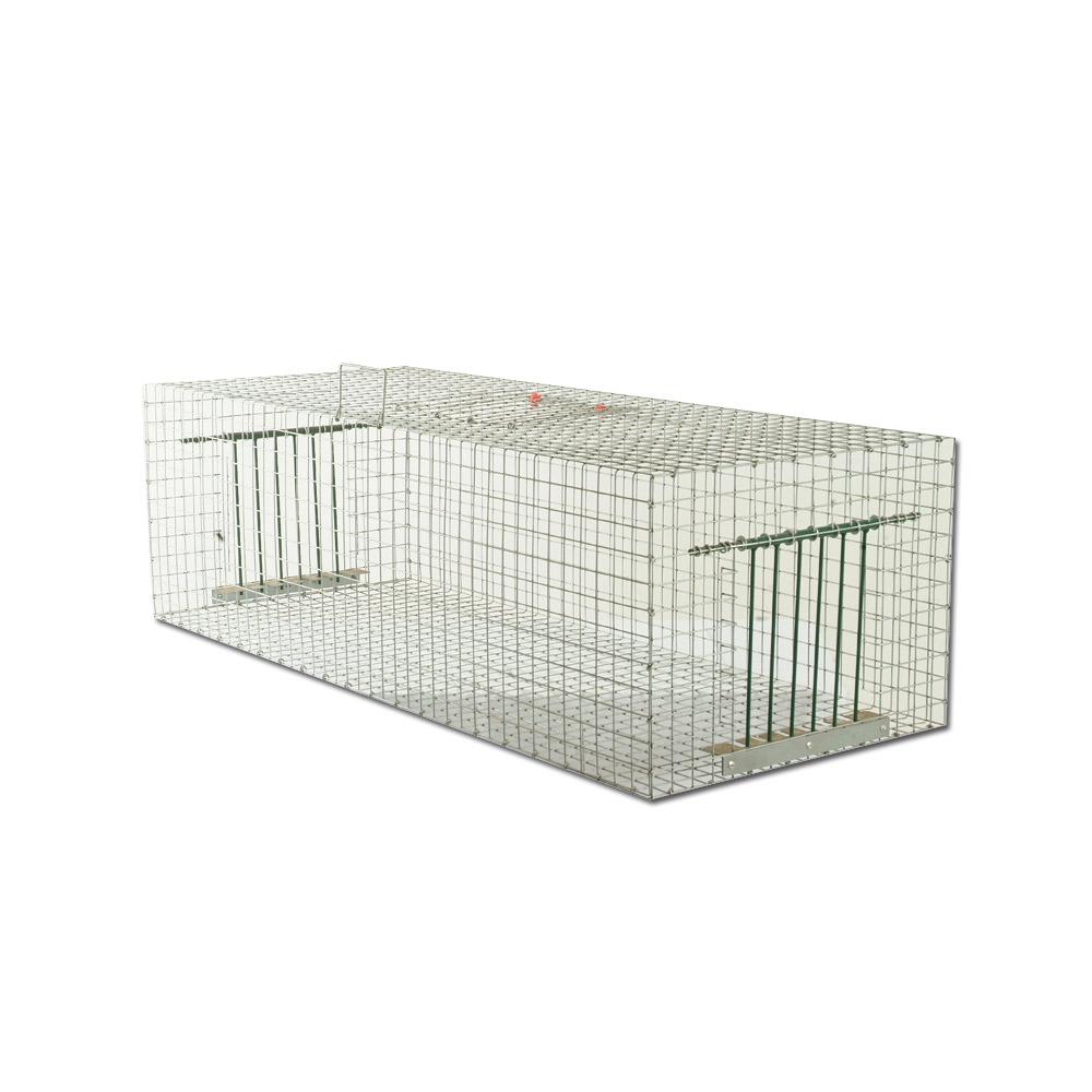 plan cage piege pour pigeon