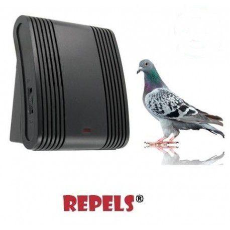 repulsif pigeon fenetre