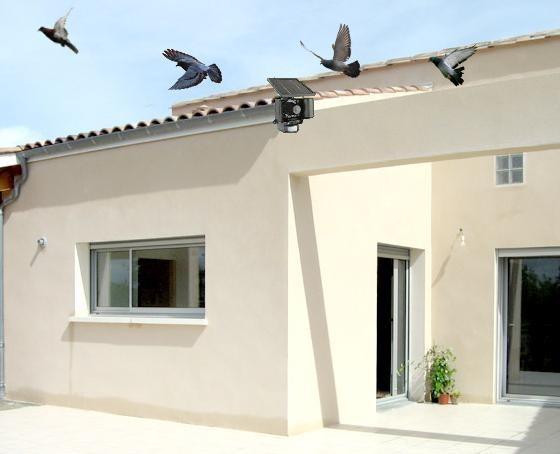 ultrason anti pigeon solaire