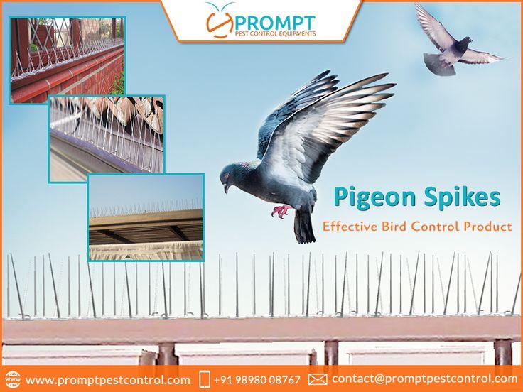 anti pigeon devices india