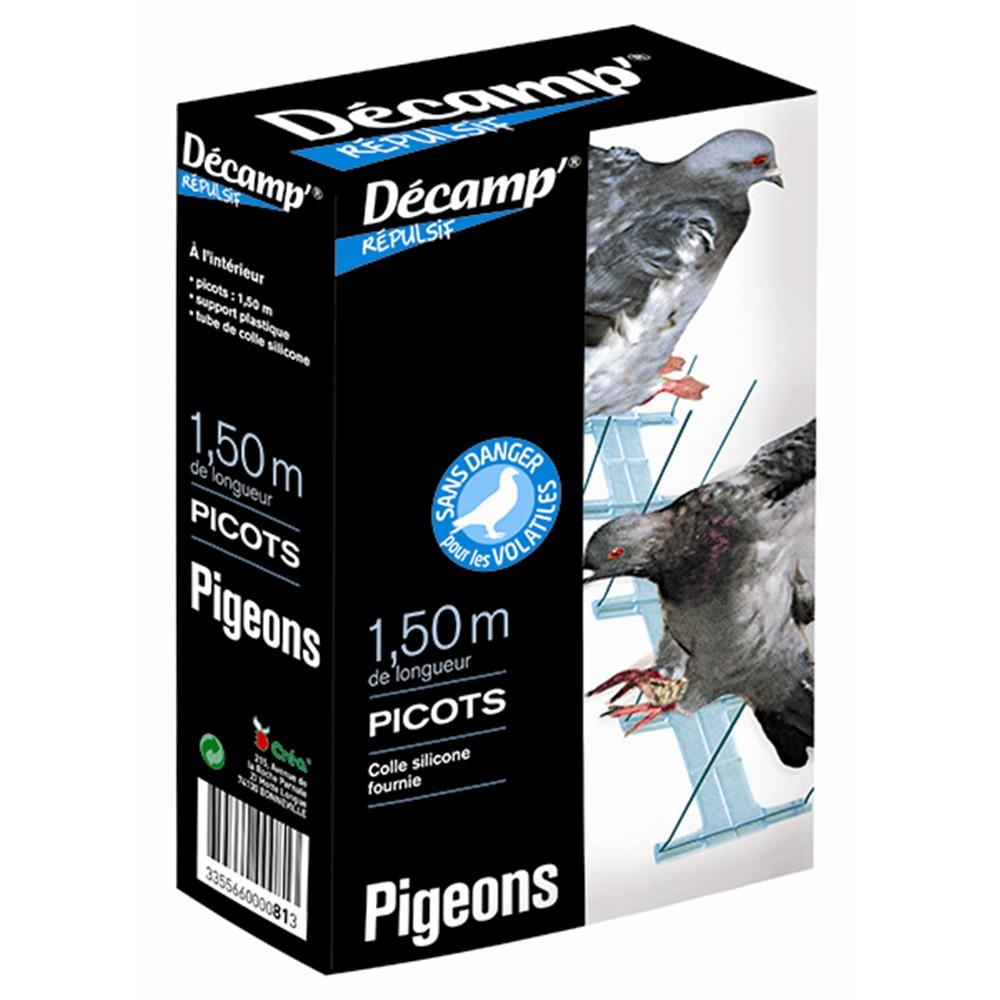 anti pigeon truffaut