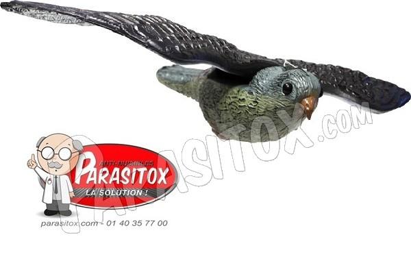 effaroucheur anti pigeons