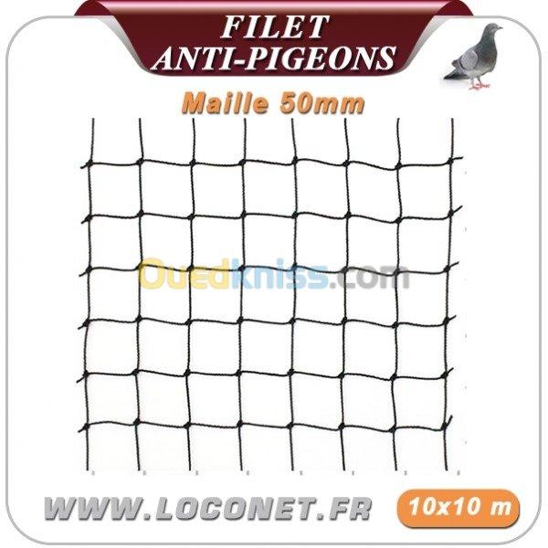 filet anti pigeon algerie