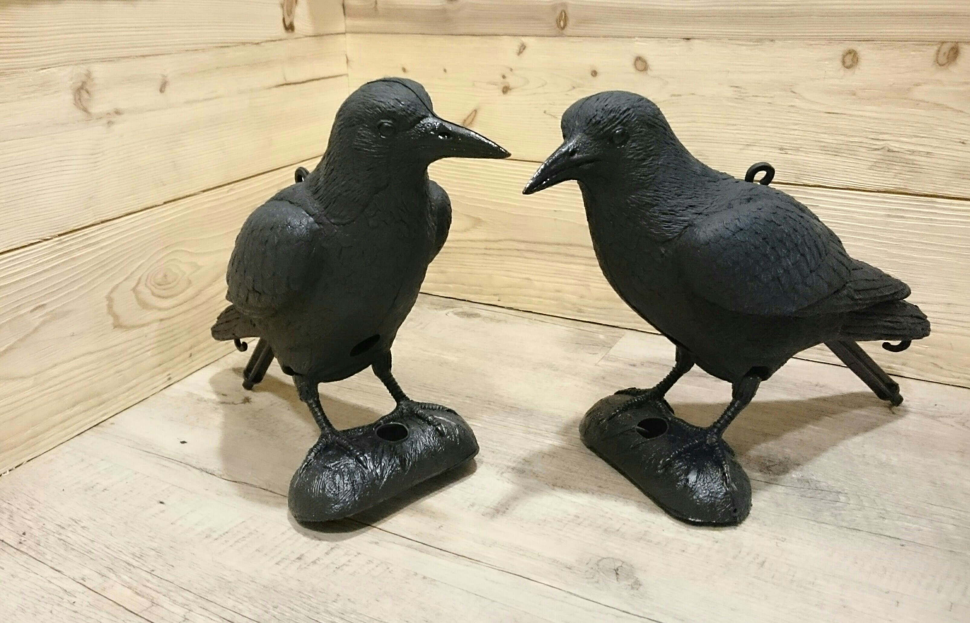 pics anti oiseaux plastique
